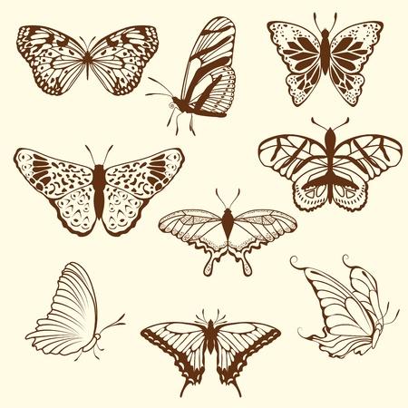 sketch pattern: Conjunto de mariposa de esbozo diferentes. ilustraci�n para uso de dise�o.