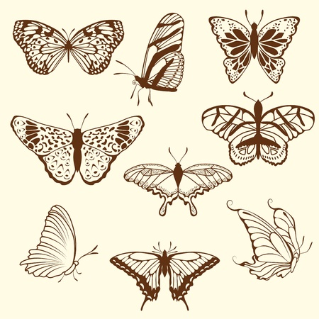 draw a sketch: Set of different sketch butterfly. illustration for design use.