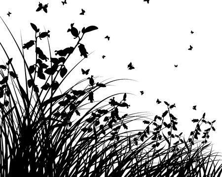 grass silhouettes background. All objects are separated. Vector