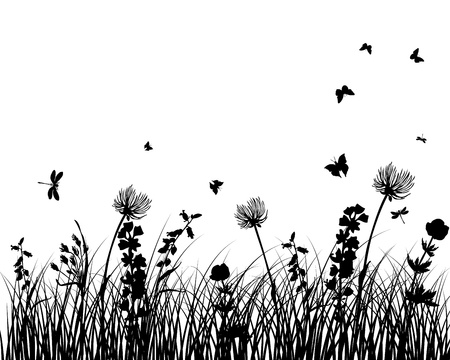 meadow flower: Vector grass silhouettes background. All objects are separated. Illustration