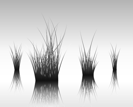 traces: Vector grass silhouettes background with reflection in water. All objects are separated.