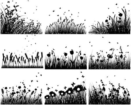 silhouette fleur: Neuf vecteur silhouettes d'herbe horizons. Tous les objets sont séparés.