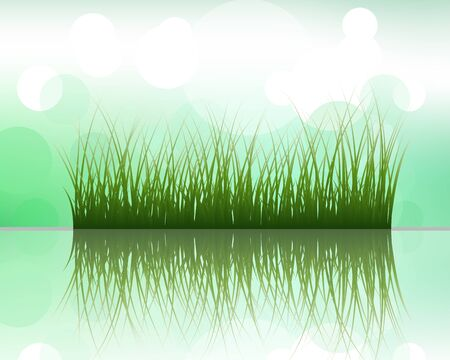 grass silhouettes on blurred background with reflection in water . All objects are separated. Stock Vector - 13100742
