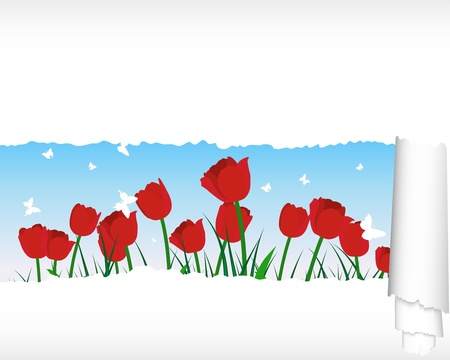 flower fields:  grass silhouettes background with ripped stripe. All objects are separated.
