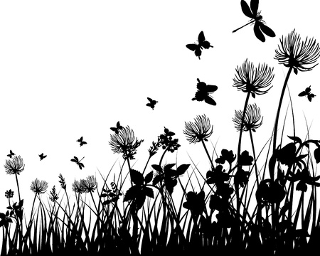 flower borders: Vector grass silhouettes background. All objects are separated. Illustration
