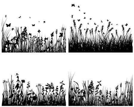 Vector grass silhouettes background set. All objects are separated. Stock Vector - 13786585
