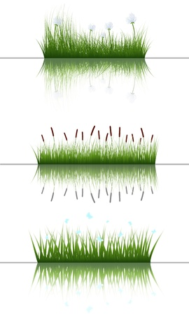 grass silhouettes background with reflection in water Stock Vector - 14191594