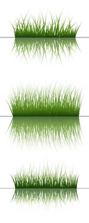 grass silhouettes background with reflection in water. All objects are separated. Stock Vector - 14191587