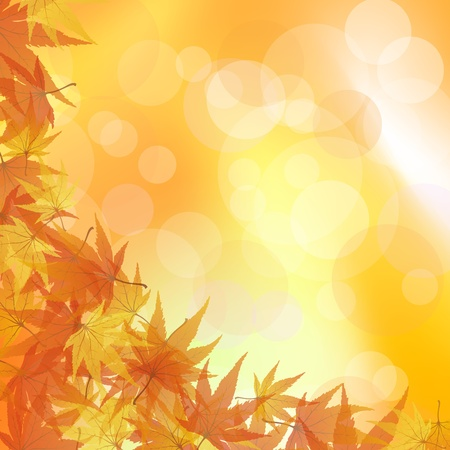 Autumn maples falling leaves background. Stock Vector - 14791858