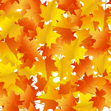 Autumn maples leaves seamless background. Vector