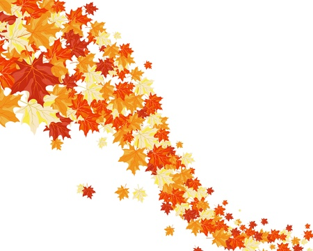 Autumn maples falling leaves background. Stock Vector - 14853728