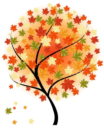 Autumn maples falling leaves background.  Stock Vector - 14853700
