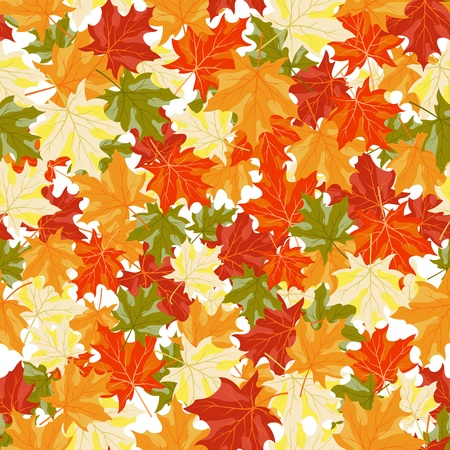 fall foliage: Autumn maples leaves seamless background. illustration.