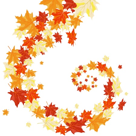 Autumn maples falling leaves background. Vector illustration. Vector