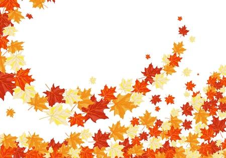 Autumn maples falling leaves background. illustration. Stock Vector - 14899215