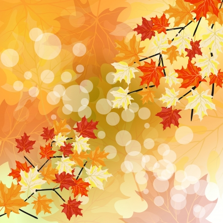Autumn maples falling leaves background. Vector illustration with trancparency EPS10. Vector