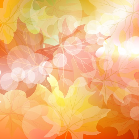 Autumn maples falling leaves background. illustration with trancparency Vector