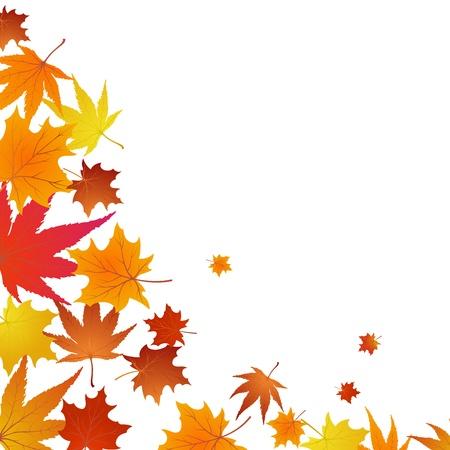 Autumn maples falling leaves background. illustration.