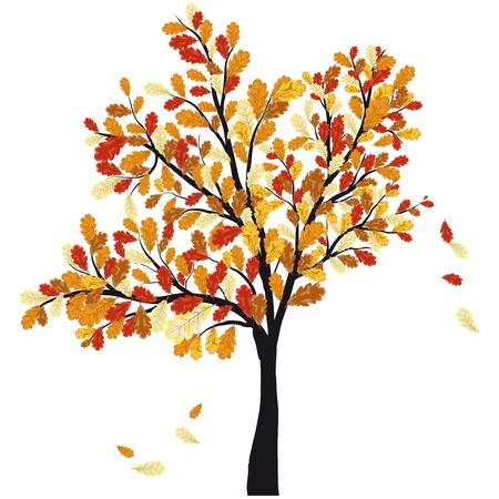 Autunno albero di quercia con foglie che cadono. illustrazione.
