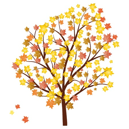 Autumn maples tree with  falling leaves. illustration.