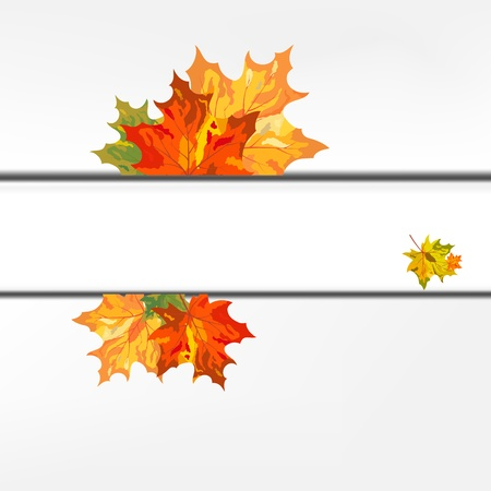 Autumn color maple leaves frame. illustration. Vector