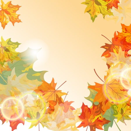 Autumn maple leaves background. illustration with transparency . Vector