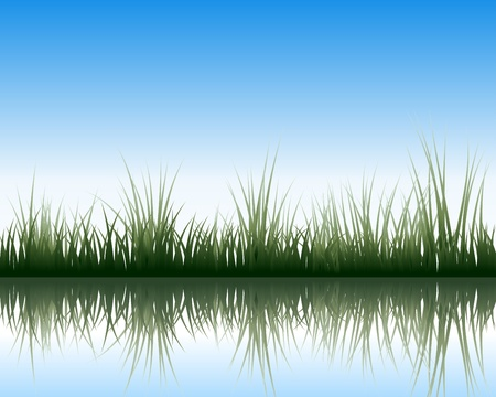 grass silhouettes background with reflection in water. All objects are separated. Stock Vector - 15007469