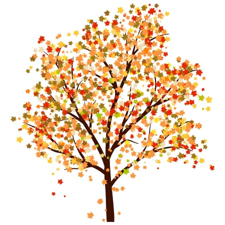 leaves falling: Autumn maples tree with  falling leaves. illustration.
