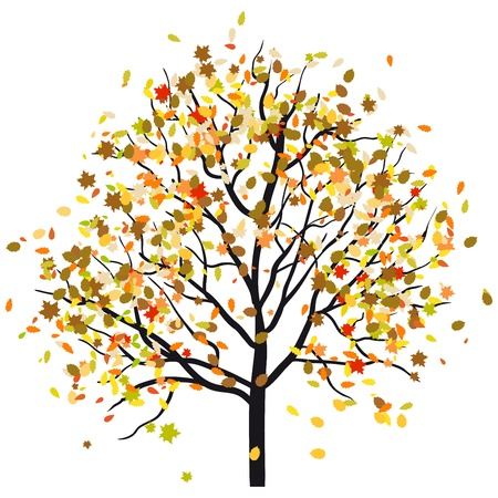falling leaves: Autumn tree with falling leaves. illustration.