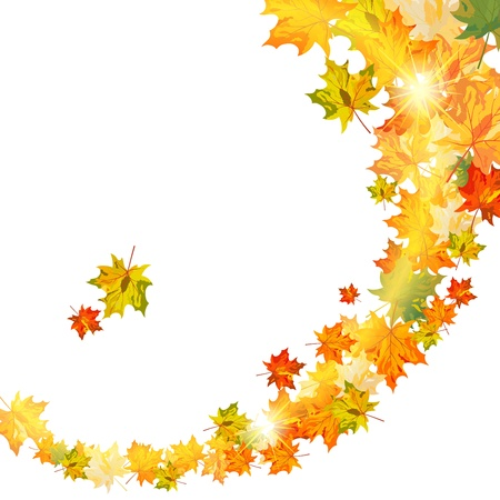 fall leaves border: Autumn maple leaves background. illustration with transparency