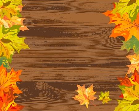 fall trees: Autumn maple tree leaves on  wooden plank. illustration.