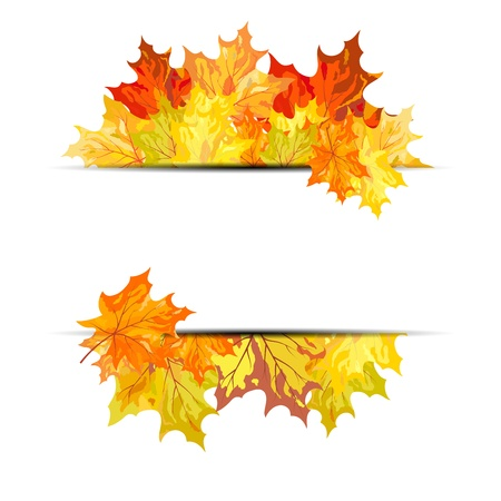 Autumn maple leaves background. illustration with transparency  Vector