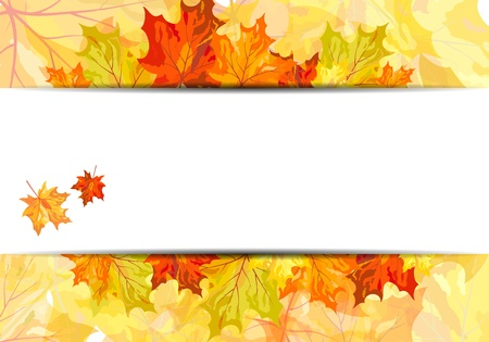 Autumn maple leaves background. illustration Vector
