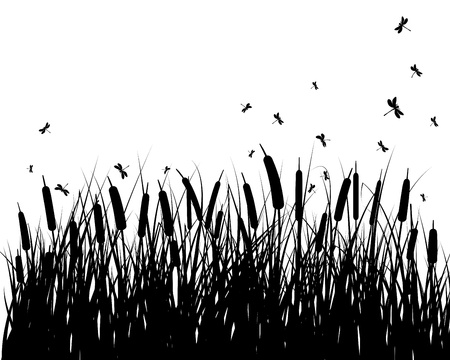 grass silhouettes background. All objects are separated. Stock Vector - 15307178