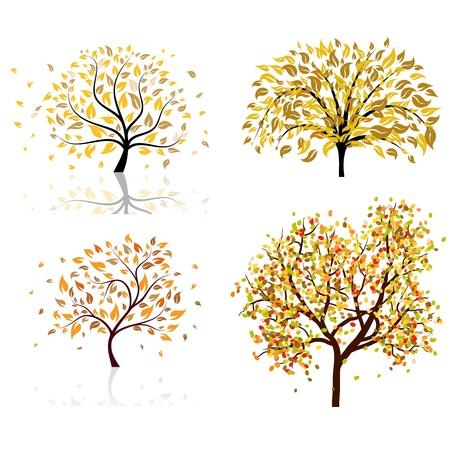 deciduous: Set of four autumn tree. illustration.