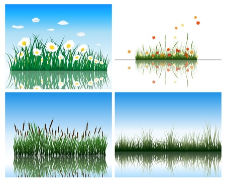 Water flora background set. Four images. illustration. Vector