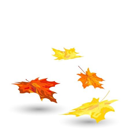 Otoño las hojas de arce de fondo. Ilustración de vector