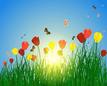 Meadow color background with butterfly and sun. Stock Vector - 15417954