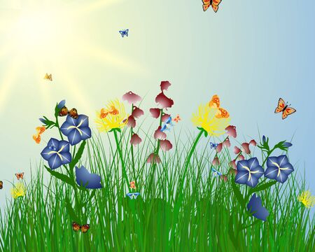 Meadow color background with butterfly and sun. Stock Vector - 15417950