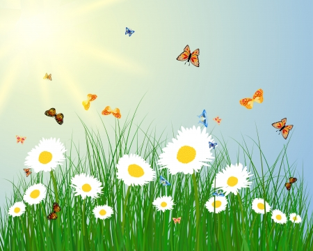 Meadow color background with butterfly and sun. All objects are separated. illustration with transparency. Illustration