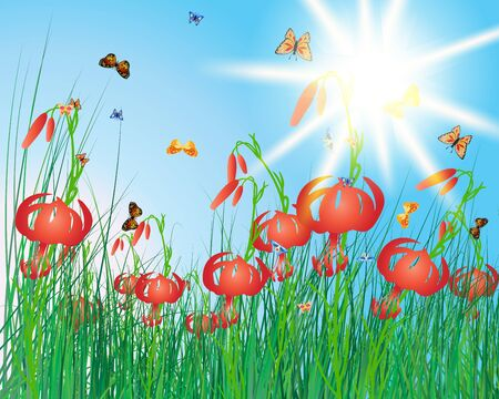 Meadow color background with butterflies. All objects are separated. Vector illustration with transparency Vector