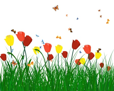 Meadow color background with butterflies. All objects are separated. Vector illustration. Stock Vector - 17284376