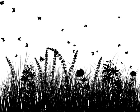 grass blade: Meadow background with butterfly and flower. Vector illustration. Illustration