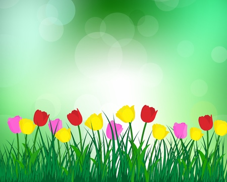 Summer meadow background with tulips. EPS 10 vector illustration with transparency and meshes. Stock Vector - 19802298