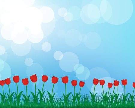 Summer meadow background with tulips. EPS 10 vector illustration with transparency and meshes. Vector