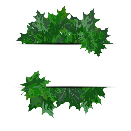 Summer maple leaves. EPS 10 vector illustration with transparency and meshes. Stock Vector - 19802304