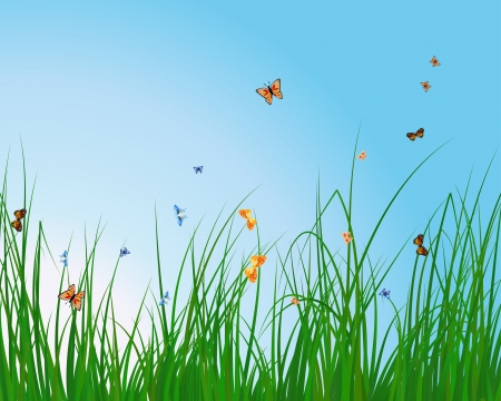 Summer meadow background with tulips  EPS 10 vector illustration with transparency and meshes  Vector