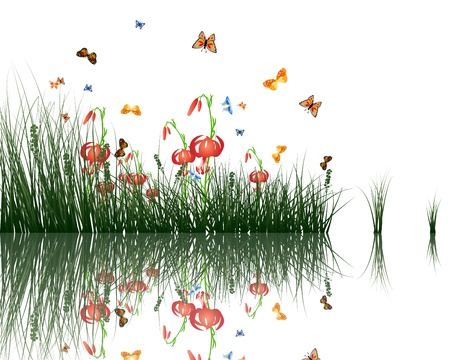 Summer grass with reflections in water  EPS 10 vector illustration  Illustration