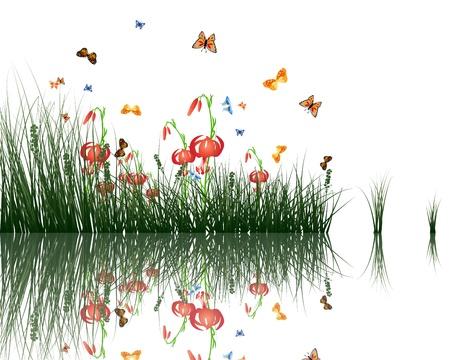 Zomer gras met reflecties in het water EPS-10 vector illustratie Stock Illustratie