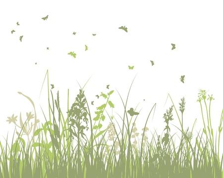 夏の牧草地の背景イラストと透明性、メッシュ  イラスト・ベクター素材